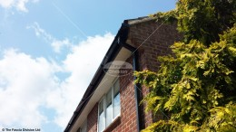 Black Ash fascia with White tongue and groove soffit and Black UPVC square guttering in Romsey, Hampshire