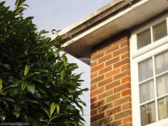 Old wooden fascia and soffit with peeling paint before complete removal