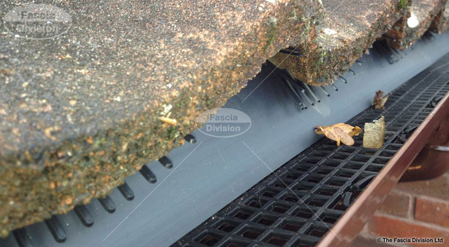 gutter guard fitted to brown ogee guttering fascia division southampton